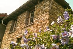 Levante-mit-Blumenpracht