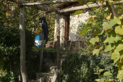 hinter-dem-Haus